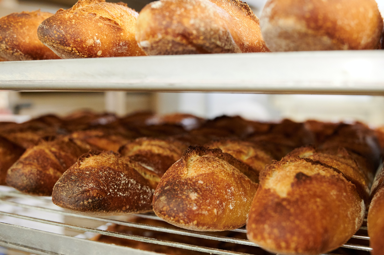 bakery program